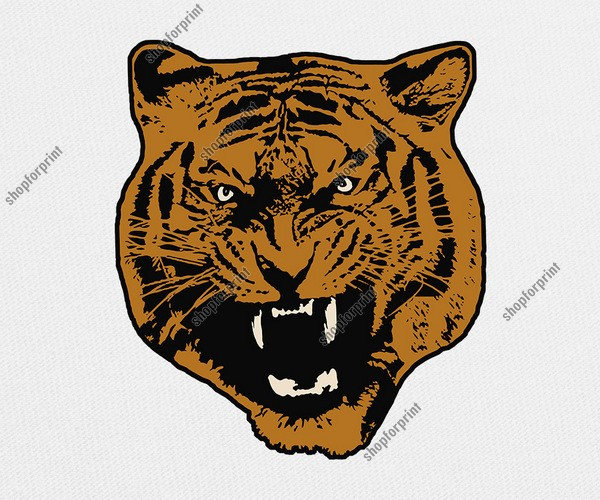 Tiger Face Growling Vector