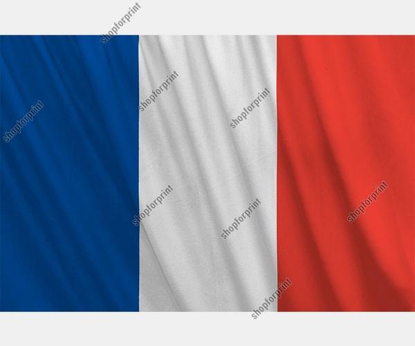 France National Flag Vector (Four Images)