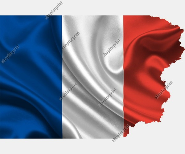 National Flag of France Vector Pack (Four Images)