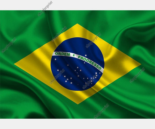 The National Flag of Brazil in Vector Formats